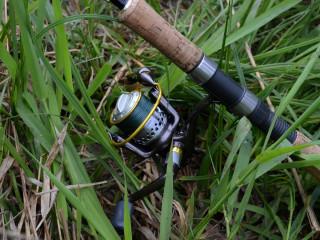 Безынерционная катушка в размере 2000 для ловли судака на джиг