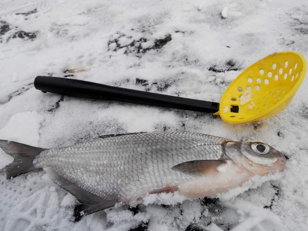 Черпак для зимней рыбалки пластиковый