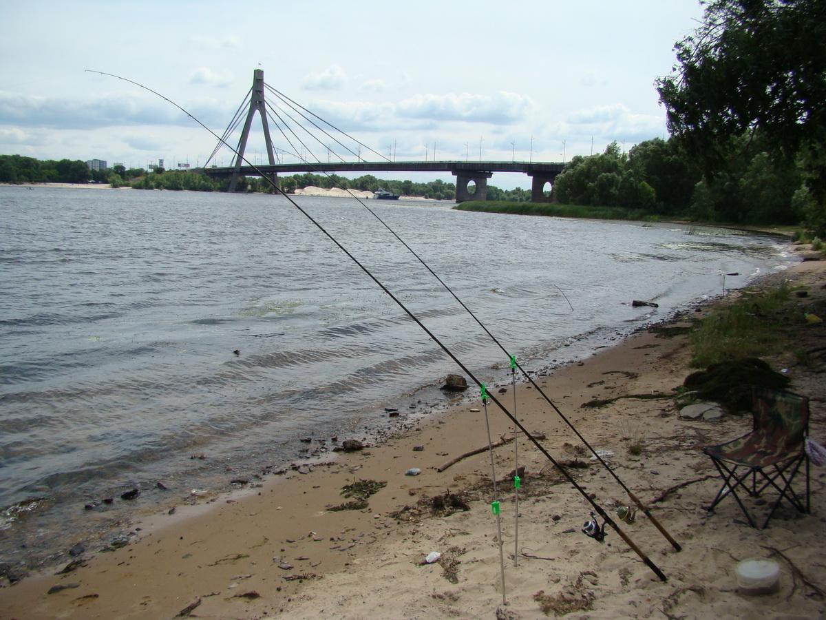Фидерная рыбалка на реке
